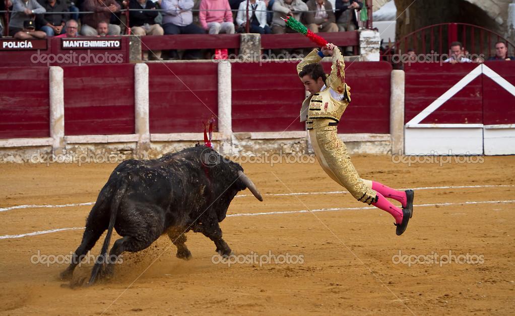 Banderillero in action. Bullfight at Ubeda, Espa–a